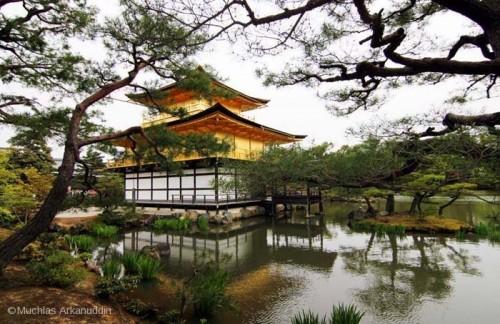 kinkakuji-temple-700-wm